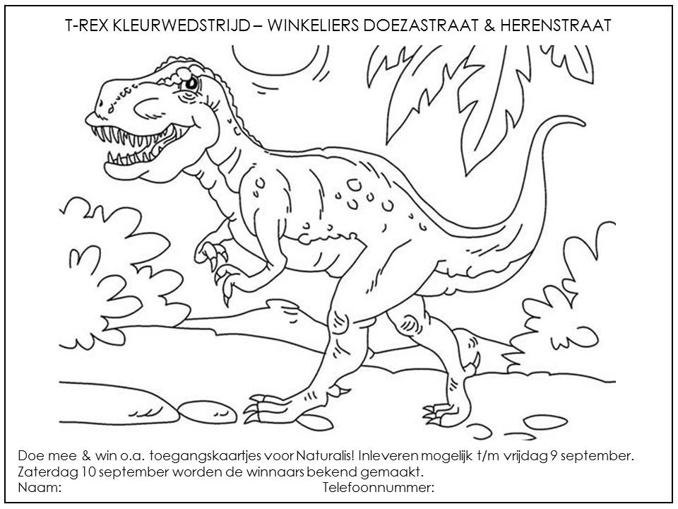 Kleurplaten Dinosaurus Rex.T Rex Kaartjes Winnen Met Kleurplaat Winkeliersvereniging