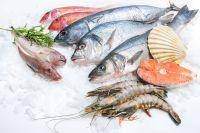 Vishandel Schaap gaat 80 jarig jubileum vieren en zoekt foto's